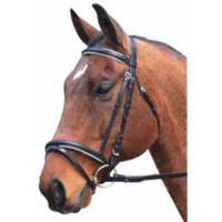 Hanovarian Eventing bridle