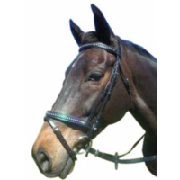 Luciana Dbl Jewelled HNB Bridle
