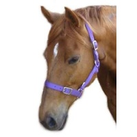 Headstall NP Buckle