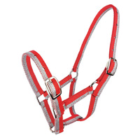 Sparkle Foal/small pony Headstall - Red