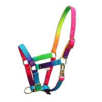 RAINBOW MINI HEADSTALL