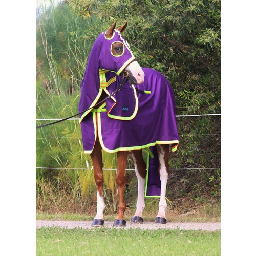 MiniCraft Show Set - Purple/Lime/Orange [Rug Size: 4'6] [HOOD SIZE: Small Pony] [TAIL BAG SIZE: XL Horse]